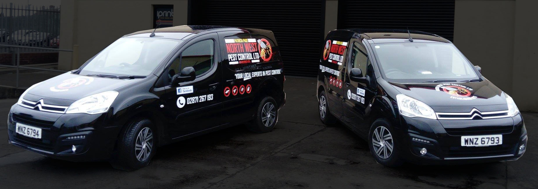 Vehicle Graphics - NW Pest Control